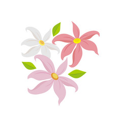Decorative blowing lily flower vector