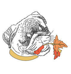 dog with autumn colorful leaves in the mouth cute vector image