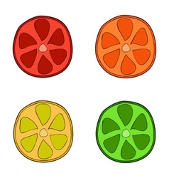 Doodle style citrus slices vector image