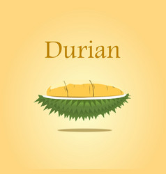 Durian design for poster and on vector