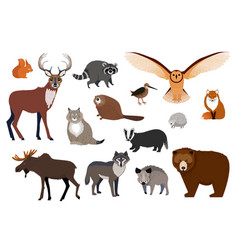 European and canadian wild forest animals set of vector