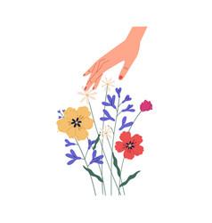 Female hand touching summer bouquet gorgeous vector