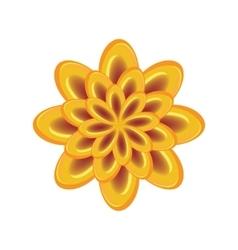 Flower icon Unusual glass view chrysanthemum vector