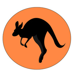 kangaroo jumping on white background vector image