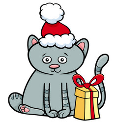 Kitten with gift on christmas time vector