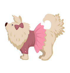 pet dog in pink dress clothes cartoon icon vector image