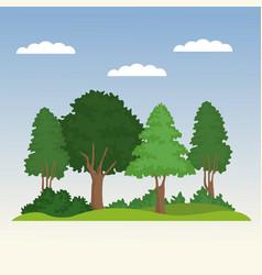 beautiful forest scene vector image