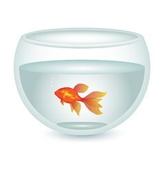 aquarium with gold fish vector image vector image