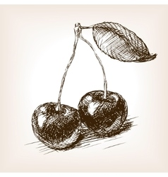 Cherry fruit sketch vector image