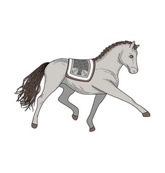 dressage horse vector image