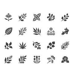 Medical herbs flat glyph icons medicinal plants vector