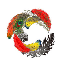 round frame formed by bird feathers with space for vector image vector image