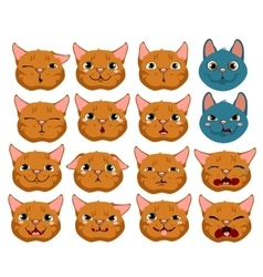 Cats expressing emotions set on white background vector image vector image