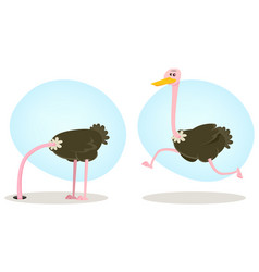 Ostrich running and hiding head vector