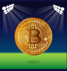 bitcoin on field vector image