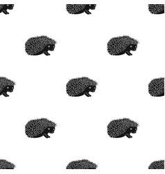 hedgehoganimals single icon in black style vector image