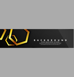 Set banner with hexagon gold color and black vector