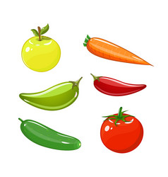Set of vegetables of tomatoes carrots vector