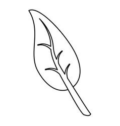 healthy food vegan symbol thin line vector image