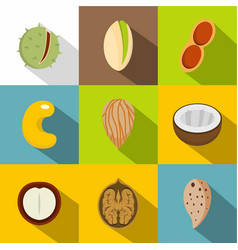 various kinds of nuts icons set flat style vector image