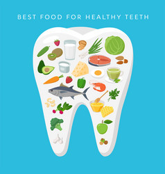 best food for healthy teeth concept vector image