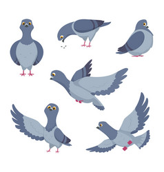 cartoon set funny pigeons of vector image