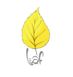 golden leaves background vector image
