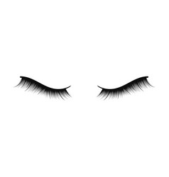 Lush black lashes on white background for makeup vector