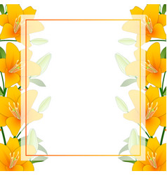 Orange lily banner card border on white background vector