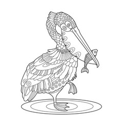 pelican bird with fish coloring book vector image