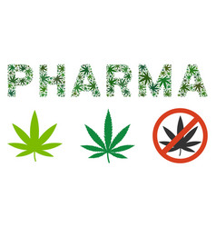 Pharma label collage of cannabis vector