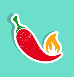 Red hot chilli pepper vector