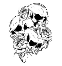 Roses and skulls on white vector