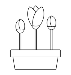 Tulips in planter icon outline style vector