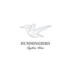 vintage retro hand drawn hummingbird or colibri vector image
