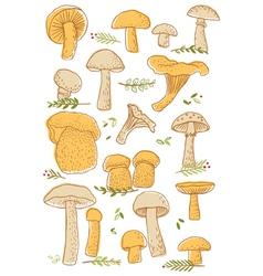 Mushrooms doodle set vector image vector image