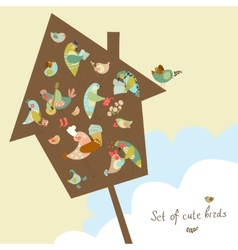 Set of cute birds in vector image vector image