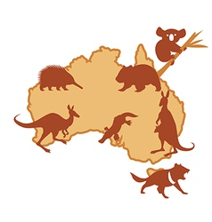 australia with silhouettes animals vector image