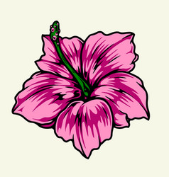 Beautiful hibiscus flower colorful concept vector