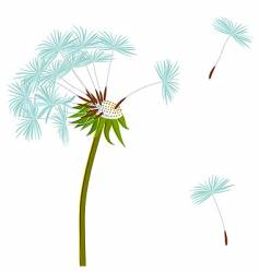 dandelion on the wind vector image