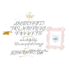 elegant calligraphic brush typeface with decor vector image