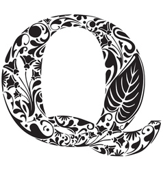 Floral Q vector image