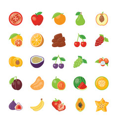Food and ingredients icons vector