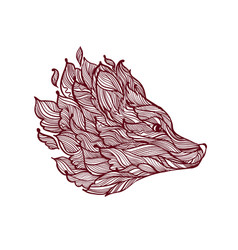 icon decorative fox head vector image