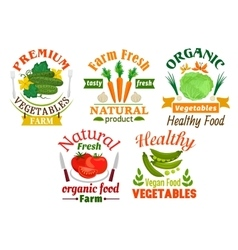 Natural vegetables cartoon badges set vector image