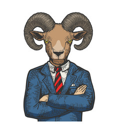 ram businessman color sketch engraving vector image
