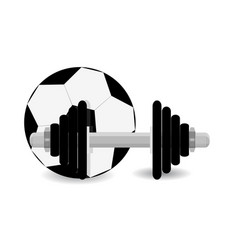 soccer training vector image