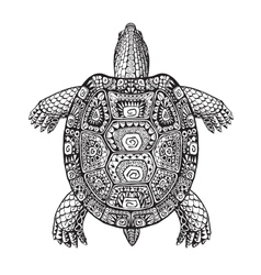 Turtle ethnic graphic style with decorative vector image