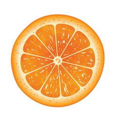 orange slice isolated on white background vector image vector image