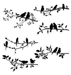 set of birds at tree branches silhouettes vector image